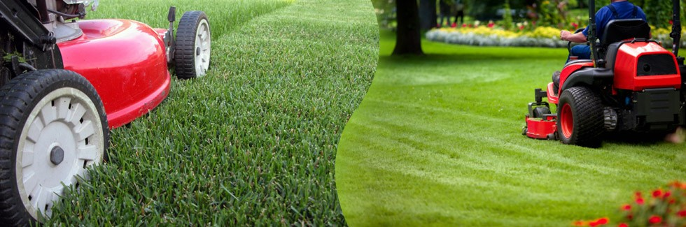 Lawn cleanup mechanicsville lawn care 23111 804 572 9040 for Lawn and garden maintenance services
